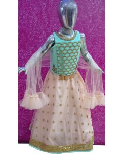 Girls party wear Dress Net and heavy banarasi fabric with Beautiful hand work