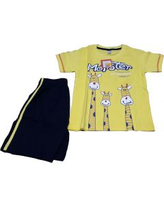 Yellow and Blue Combination of Shorts and T-shirts